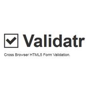 validate-form-inputs-validatr