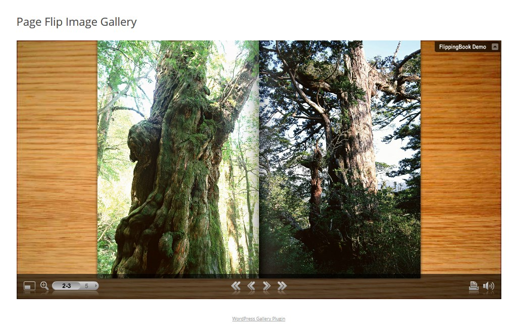 page-flip-image-gallery-wordpress-plugin-04