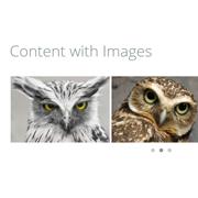 carousel-javascript-design-owlcarousel