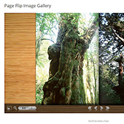page-flip-image-gallery-word